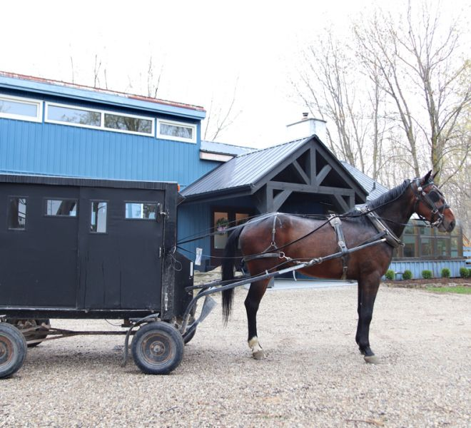 Located in Mennonite Country, The Blue Bruce - Weddings | Bed & Breakfast | Events Near St. Jacobs Ontario